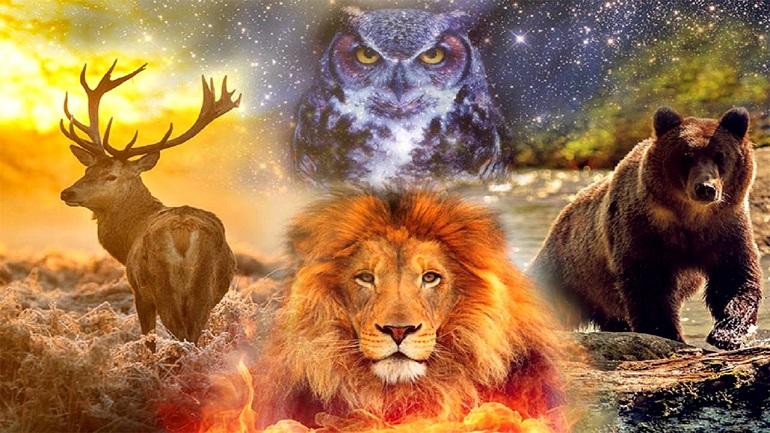 Animali totem